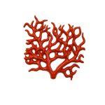 enotecailbarocco-corallomedio-friscia